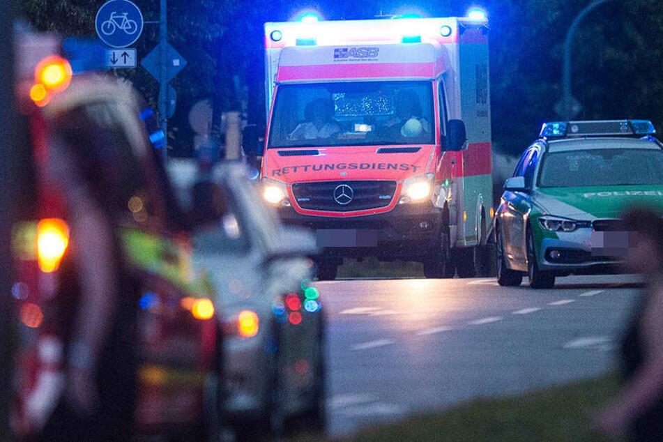 Ein Fußgänger und dessen Hund wurden in Naumburg von einem Auto erfassst und getötet. (Symbolbild)