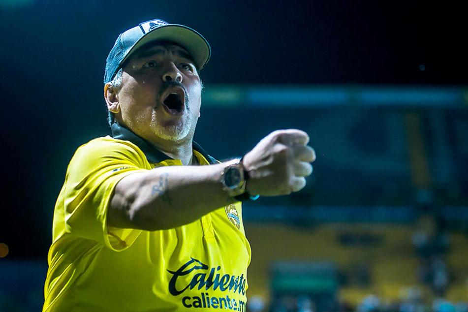 Trainiert seit Anfang September den mexikanischen Zweitligisten Dorados de Sinaloa: Diego Armando Maradona.