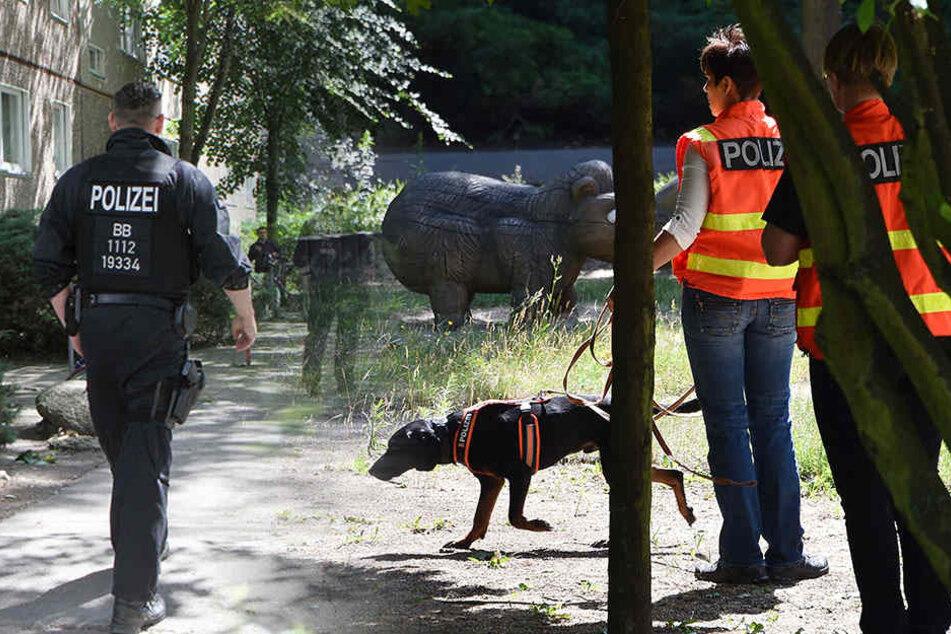 Mehrere Beamte waren im Einsatz und suchten nach dem kleinen Mädchen. (Symbolbild)