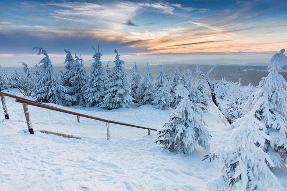 Eine prächtige Landschaft gibt es jetzt auch auf dem Fichtelberg.