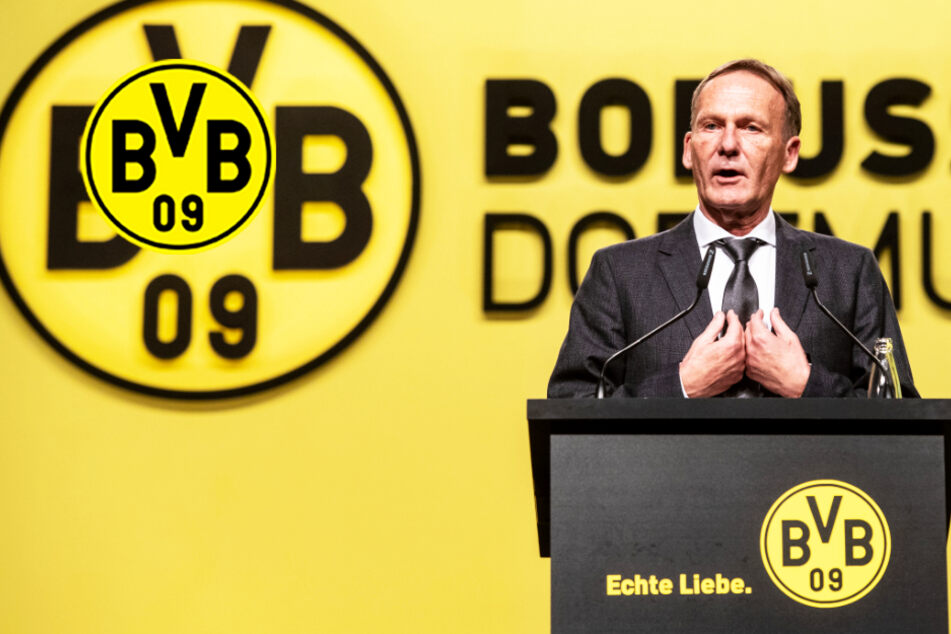 BVB-Boss Watzke entschuldigt sich selbstkritisch für harschen Tonfall bei TV-Auftritt!