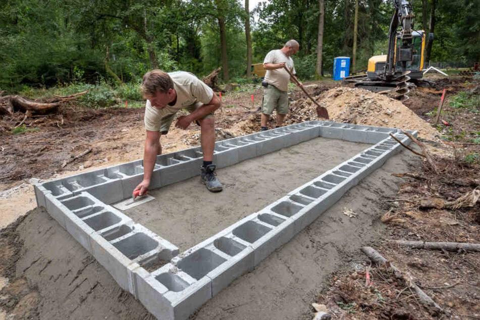 Unterkunft zum Füttern und Trennen: Arbeiter einer Spezialfirma haben bereits das Fundament für die neue Voliere (Käfig) gesetzt.