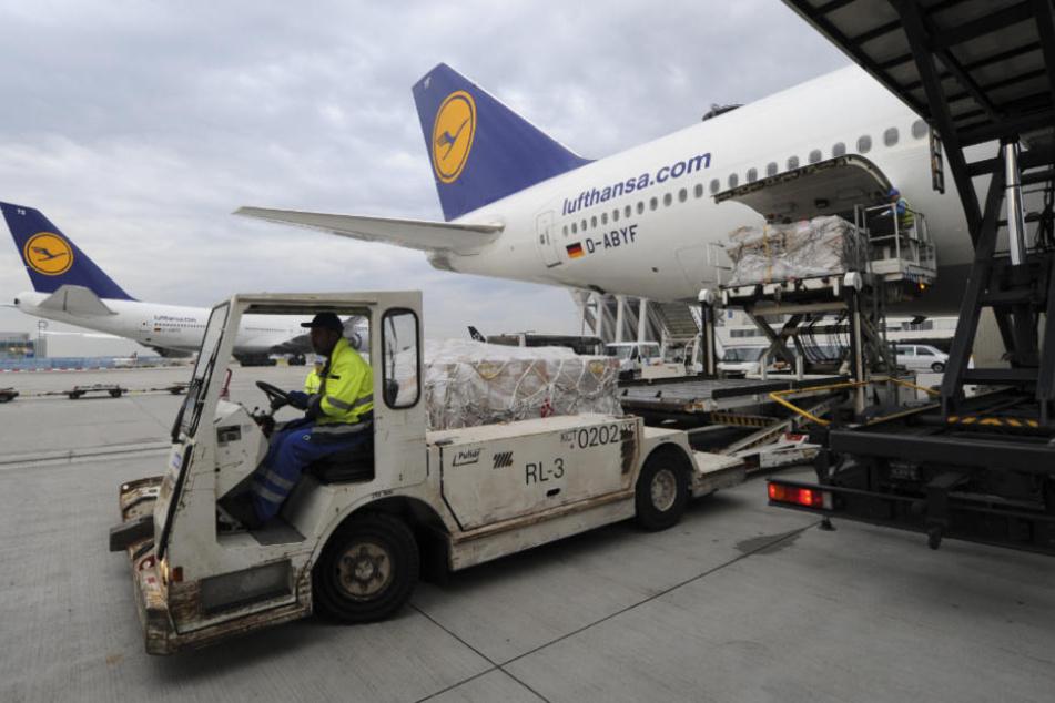 "Alarm im Cockpit! Flugzeug über Frankfurt in ""Luftnotlage"""