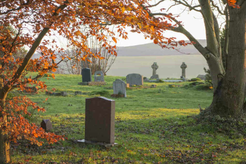 Der Diebstahl geschah auf einem Friedhof. (Symbolbild)