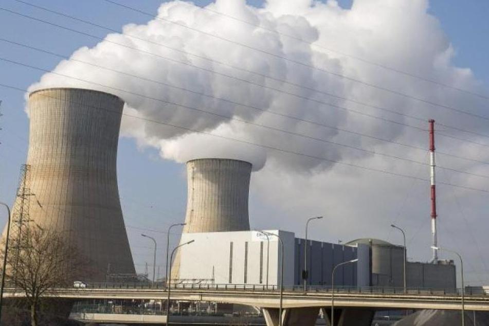 Die Umweltschutzorganisation Greenpeace vermutet eine mögliche Verschleierung eines Atomunfalls. (Symbolbild)