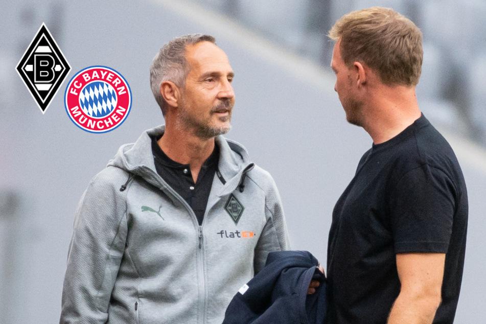 Nagelsmann bei Bayern-Debüt gegen Hütters Borussia im Fokus