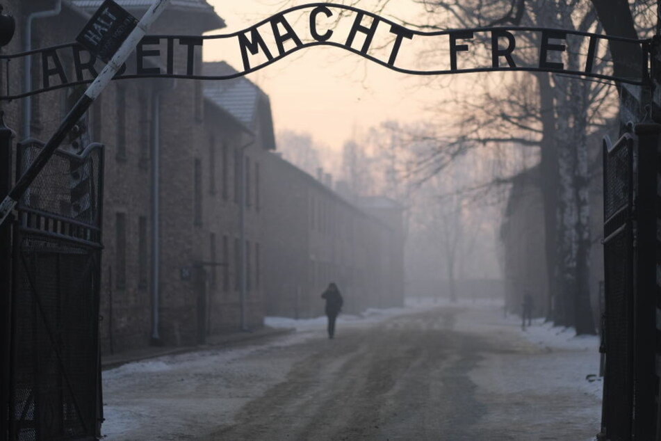 Die Fälle betreffen die Konzentrationslager Ravensbrück, Mauthausen, Buchenwald und Auschwitz.