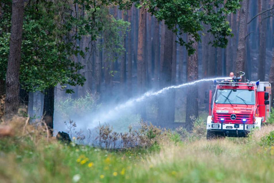 Die Feuerwehr löscht ein Glutnest des Waldbrandes bei Lübtheen