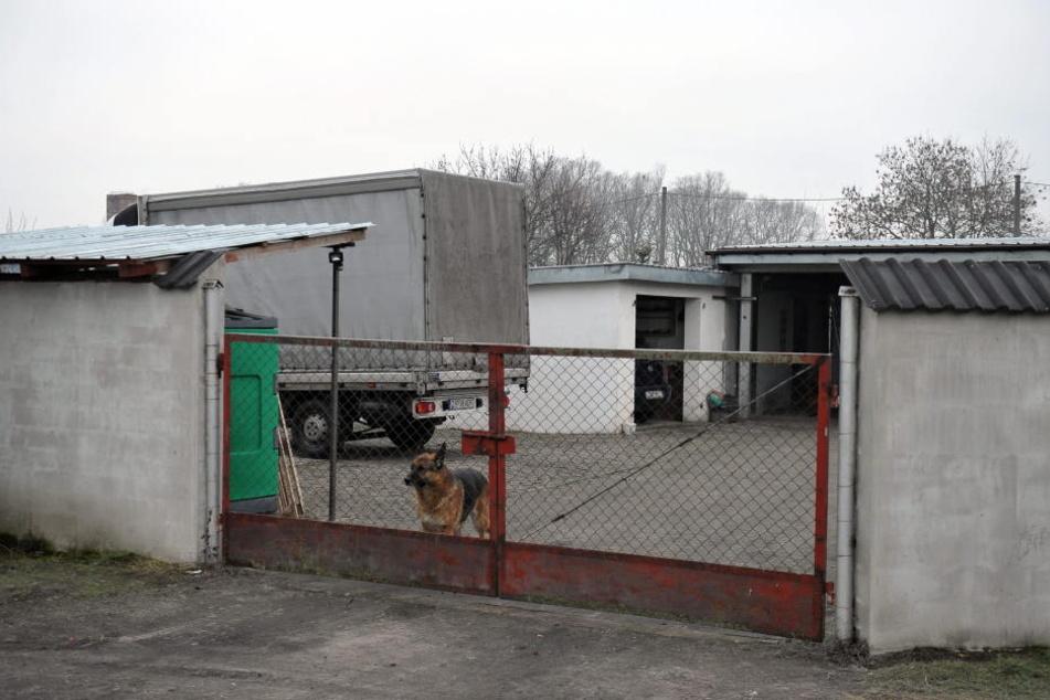 Das Gelände der Spedition in Polen, vom dem der Unglückslaster stammt.
