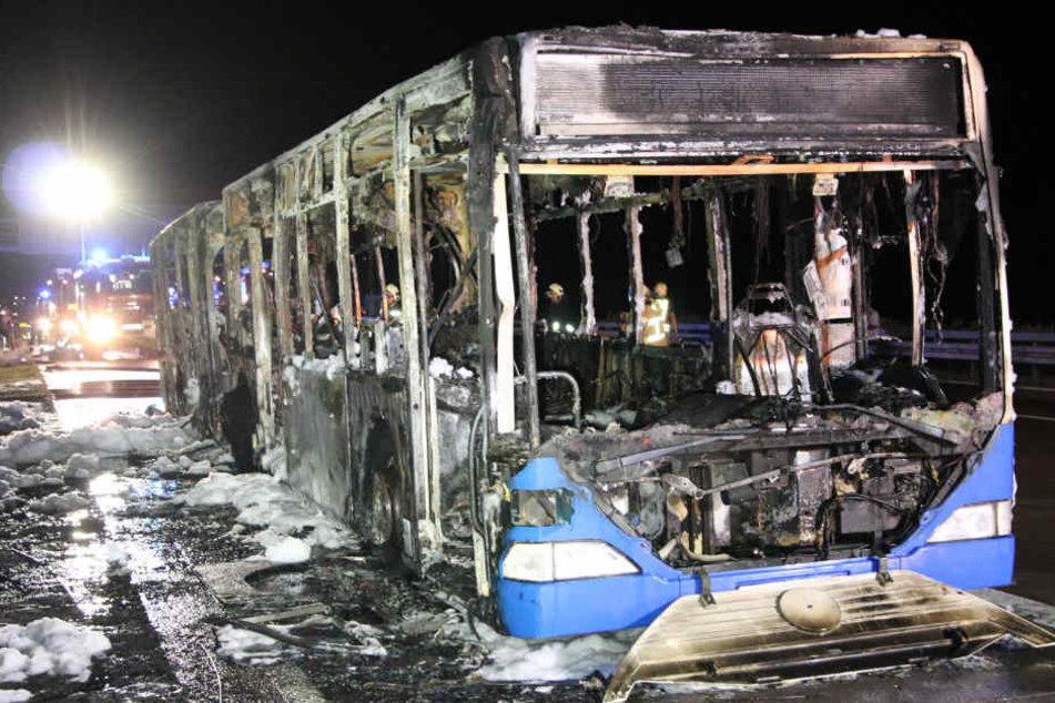 Viel ließen die Flammen vom Gelenkbus nicht übrig.