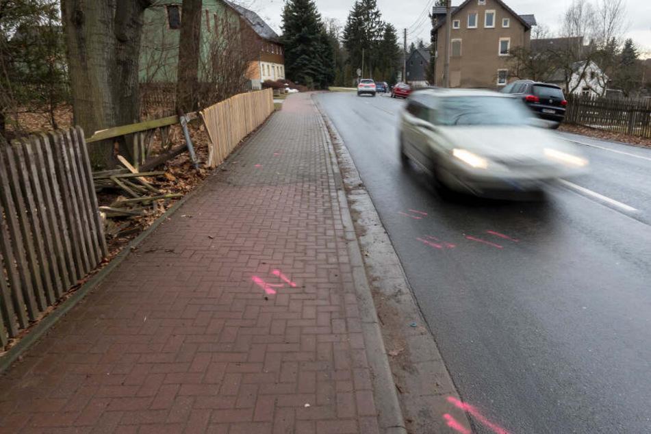 Der Mazda wurde in ein Grundstück in der Hofer Straße geschleudert.
