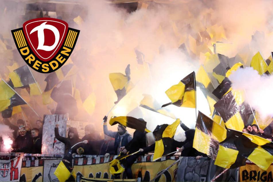 Nach erneuter Dynamo-Pleite: Fans gehen auf Spieler los