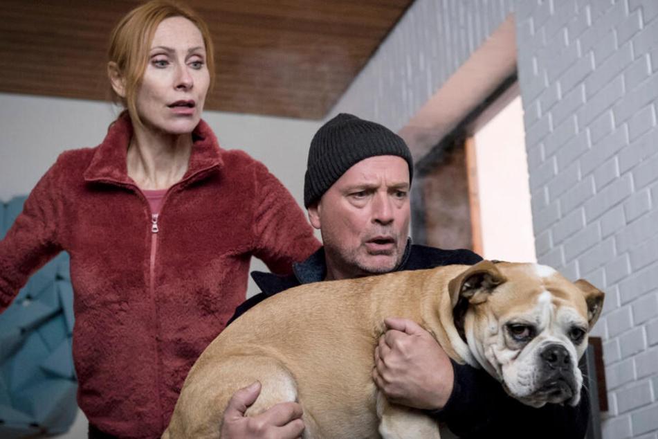 """Blick auf den Vorgänger: Anja (Andrea Sawatzki) und Christoph (Christian Berkel) retten ihren Hund Hasso in """"Scheidung für Anfänger"""" aus dem brennenden Haus."""