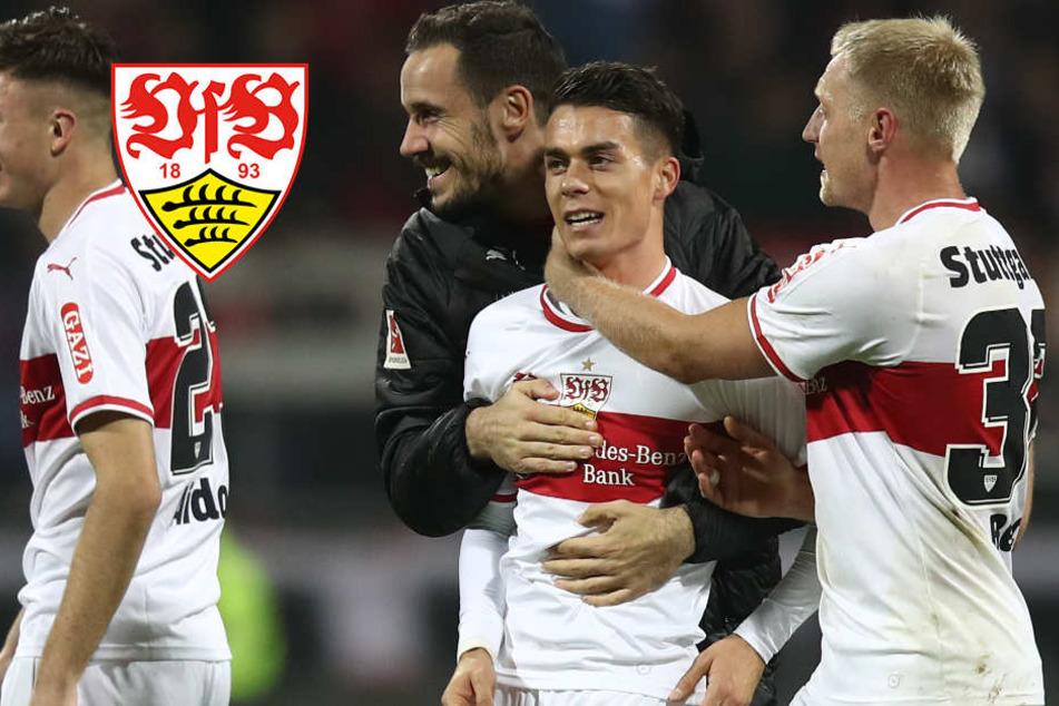 VfB findet endlich den Willen und Mut, um im Abstiegskampf zu bestehen
