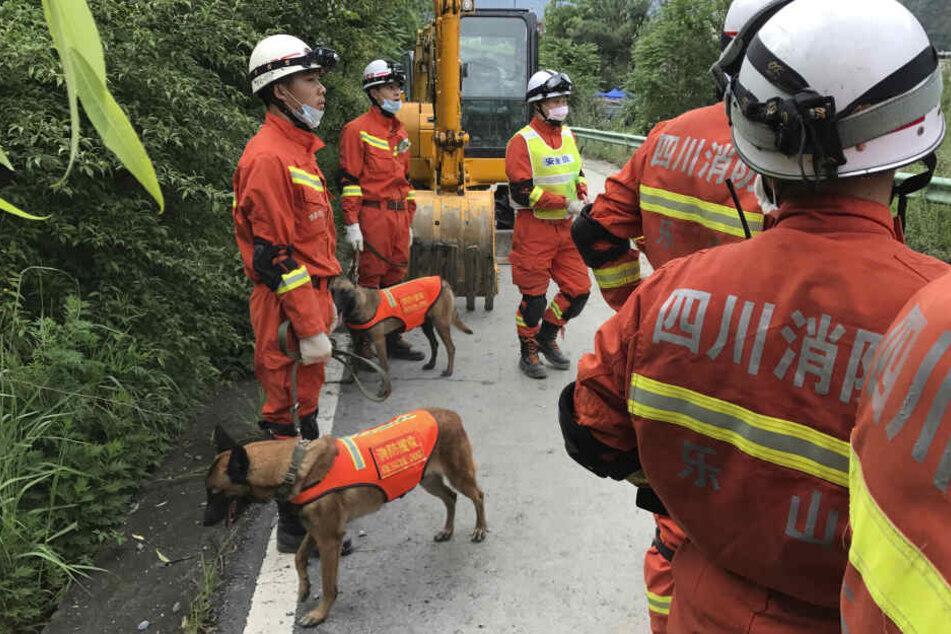 Die Rettungskräfte fanden nach dem Unglück elf Leichen. (Symbolbild)