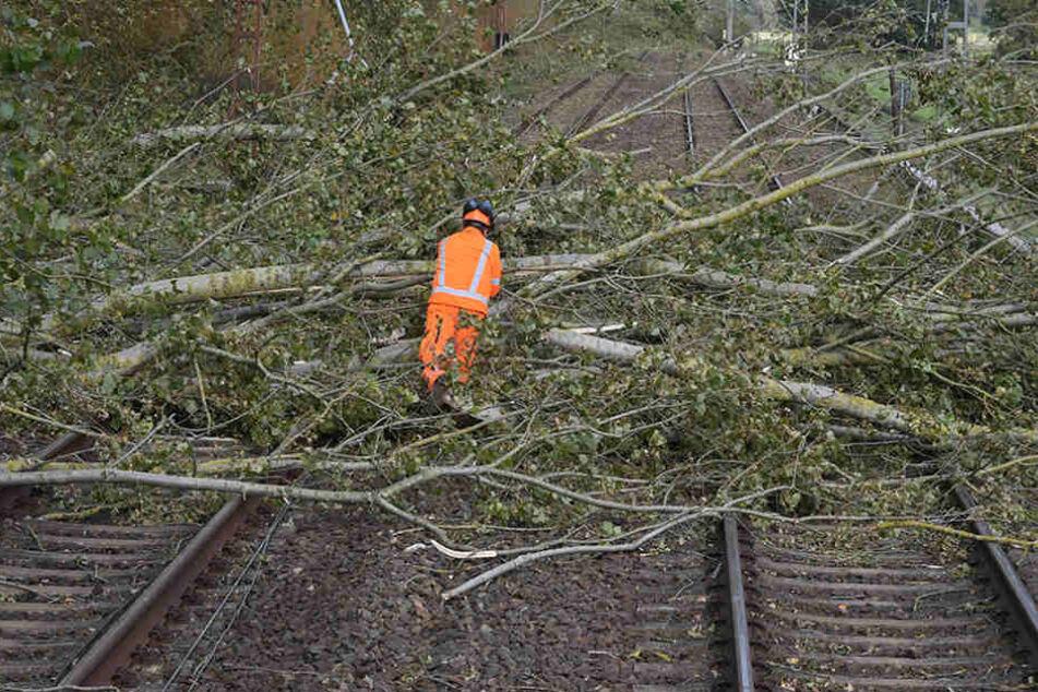 """Bahnmitarbeiter räumen bei Bötzow (Brandenburg) nach dem Sturm """"Xavier"""" umgestürzte Bäume von den Gleisen."""