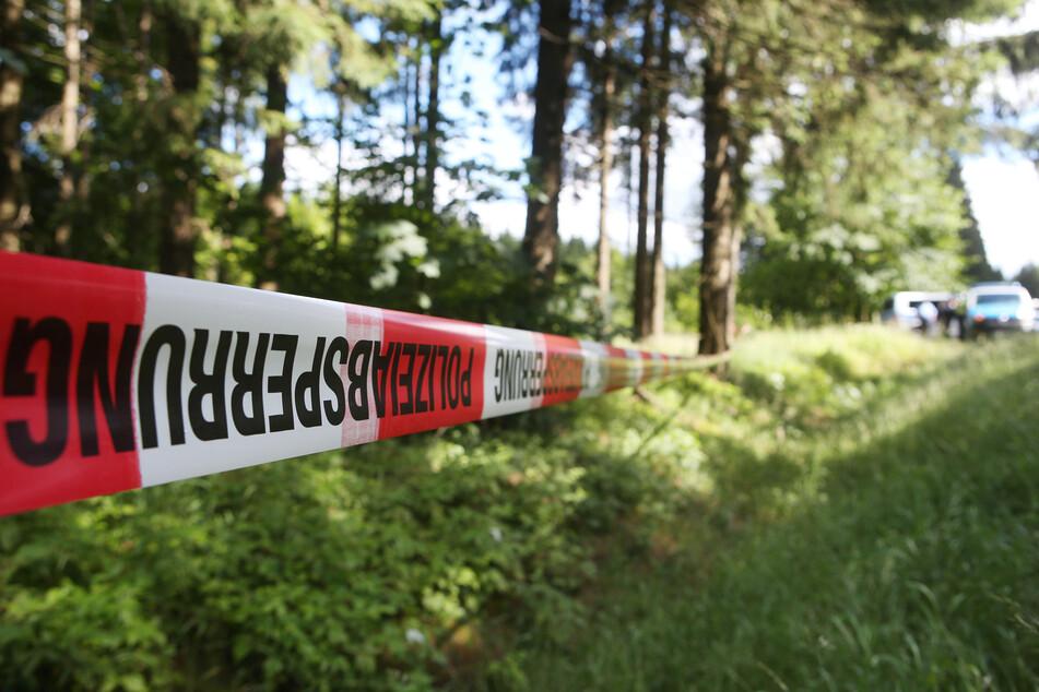 Grausiger Fund in Waldstück: Verkohlte Leiche in Auto entdeckt