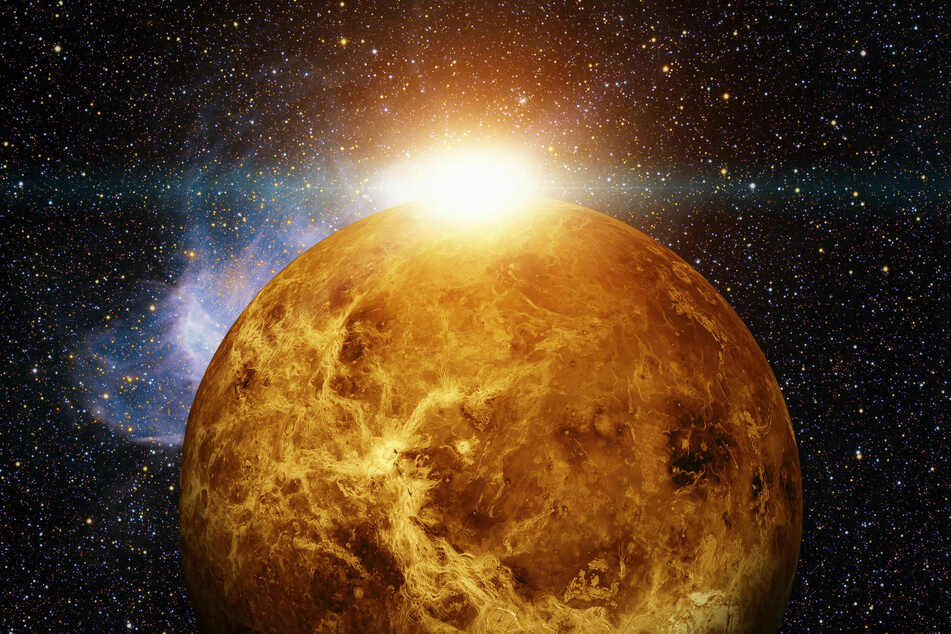 Wissenschaftler der Cardiff University haben Hinweise darauf gefunden, dass auf der Venus möglicherweise lebenden Organismen zu finden sind.