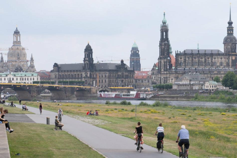 Die Elbwiesen in Dresden mit Elbe-Radweg locken viele Menschen an. (Symbolbild)