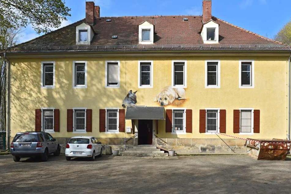 Das Tierheim in Freital.
