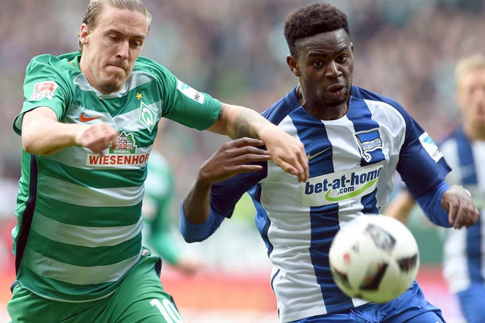 Bremens Max Kruse kämpft mit Jordan Torunarigha (r) um den Ball.