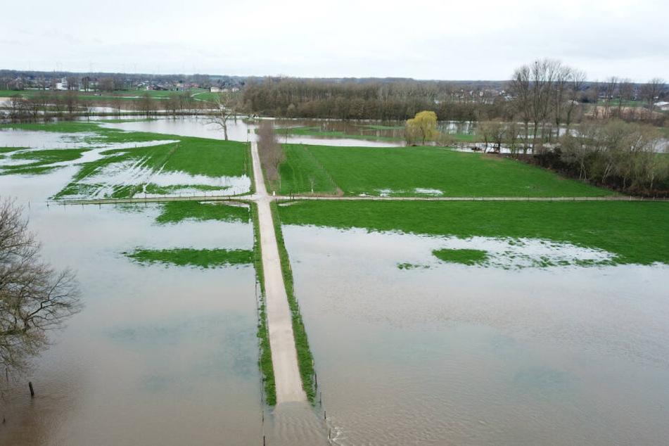 Feldwege zwischen den Ortschaften Wassenberg und Heinsberg in Nordrhein-Westfalen enden wegen Dauerregens im Wasser - die Überschwemmung kommt aus der nahen Rur.
