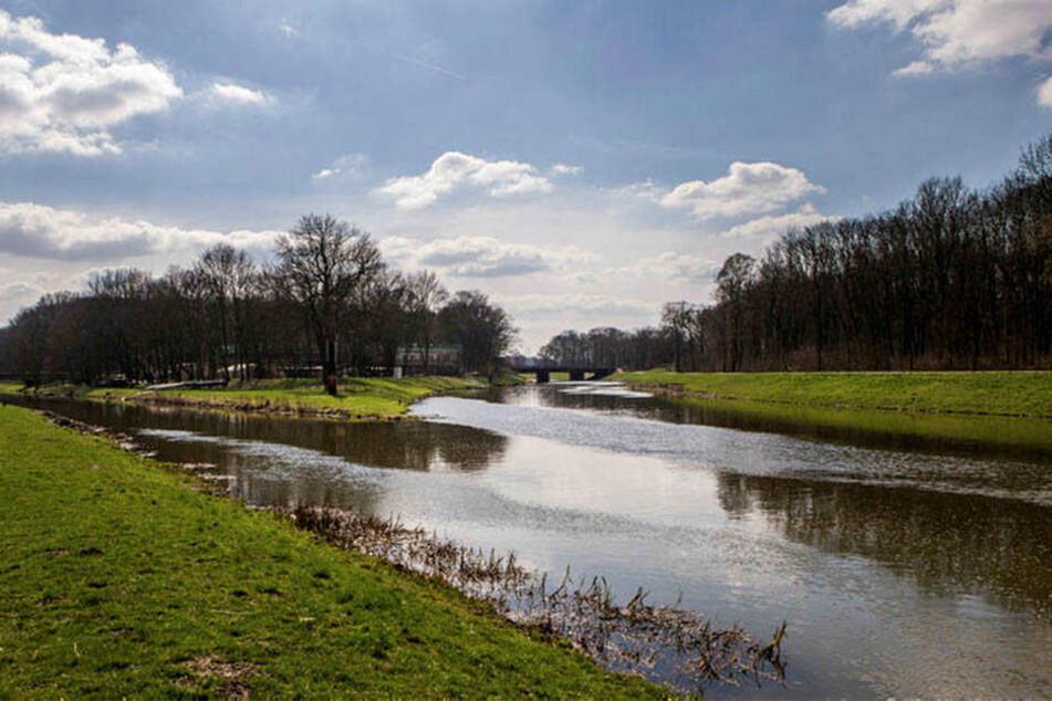 Leipzigs Gewässernetz, hier Pleiße und Elsterflutbett, wird bei Wassersportlern immer beliebter. Bis zu 900 Bootsbewegungen am Tag wurden beim Monitoring 2016 gezählt.
