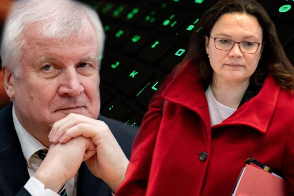 Horst Seehofer kündigte eine Erklärung an. Andrea Nahles zeigte sich bestürzt. (Bildmontage)