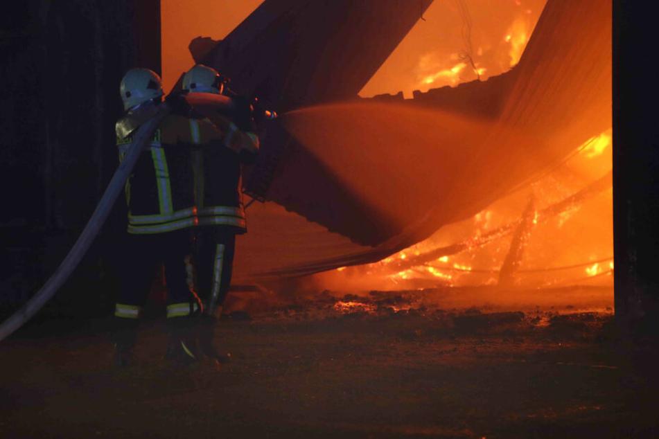 Tiere müssen gerettet werden! Lagerhalle brennt komplett nieder