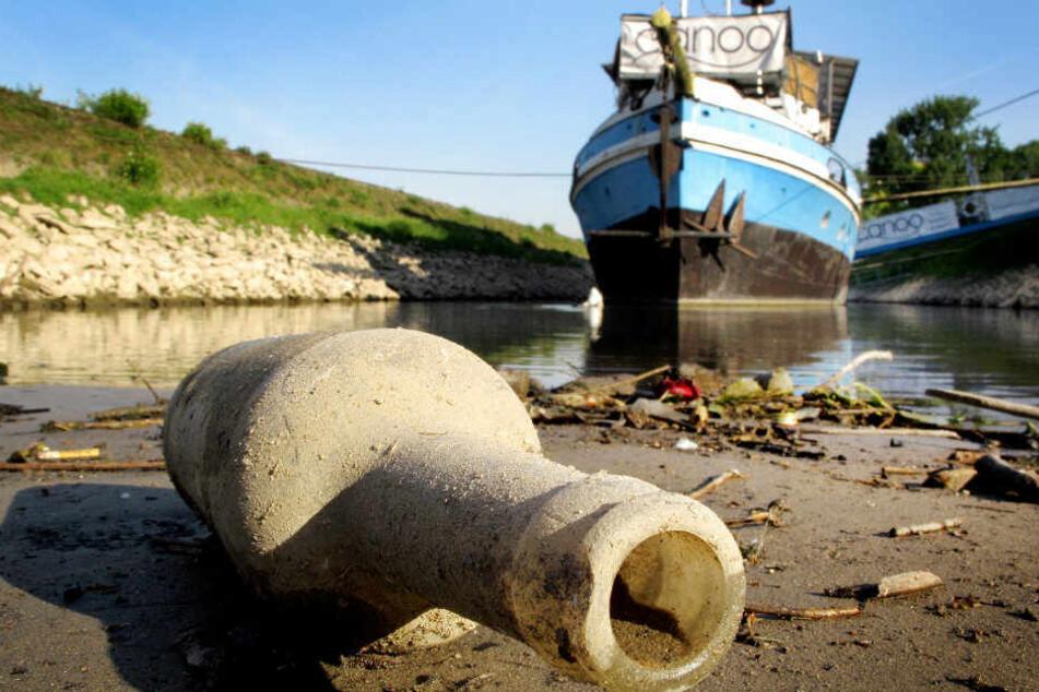 """Müll am Rheinufer. Die Aktion """"RhineCleanUp"""" will den Rhein davon befreien."""