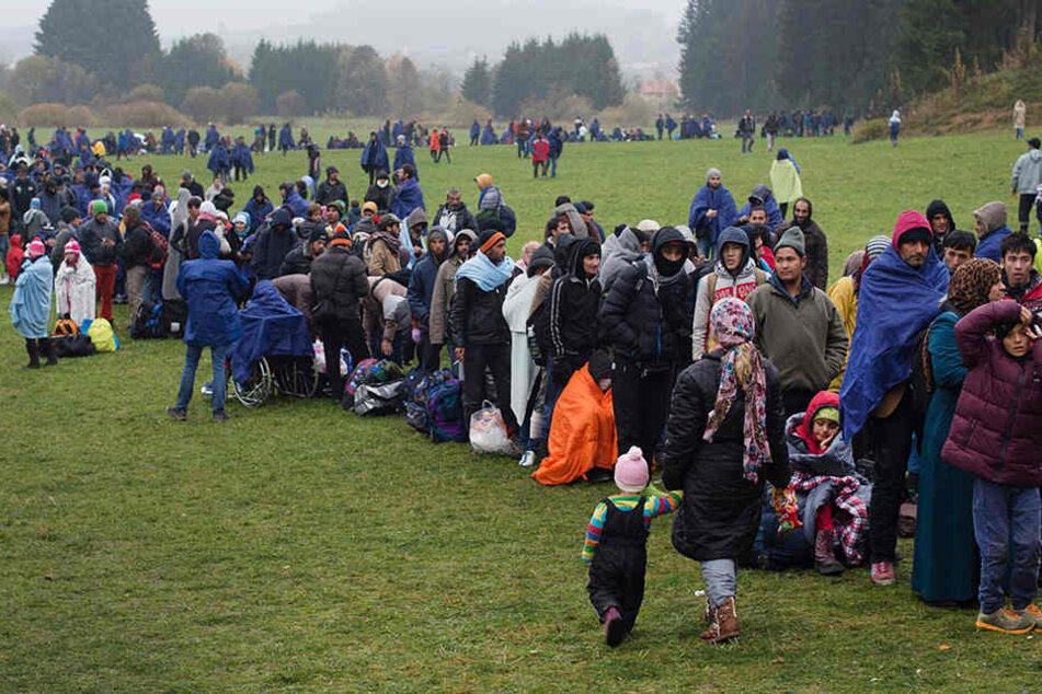 """Bei der """"hohen Zuwanderung"""" würde sich die Zahl der Muslime verdreifachen."""