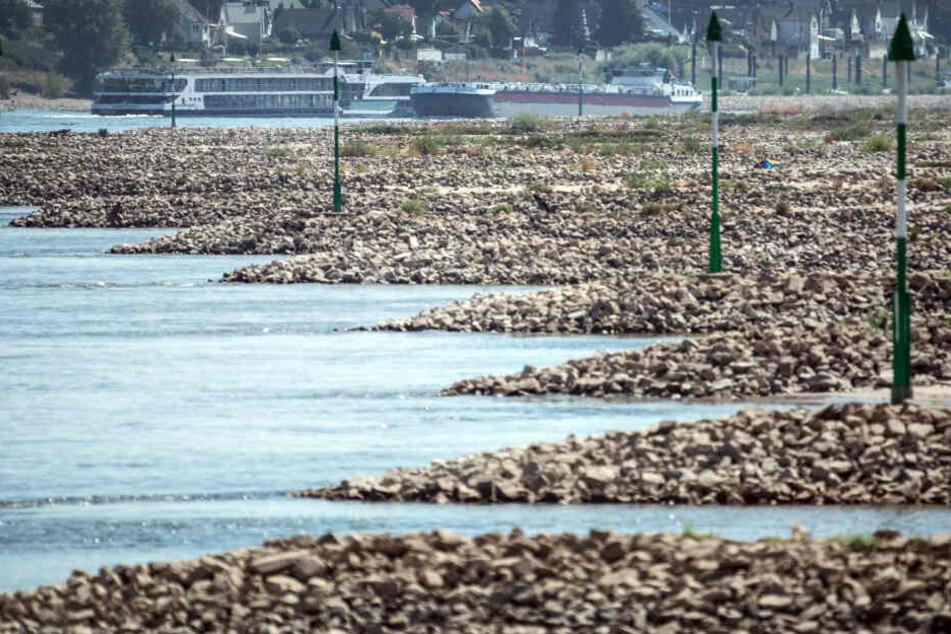 2018 war der Pegel des Rhein monatelang zu niedrig.