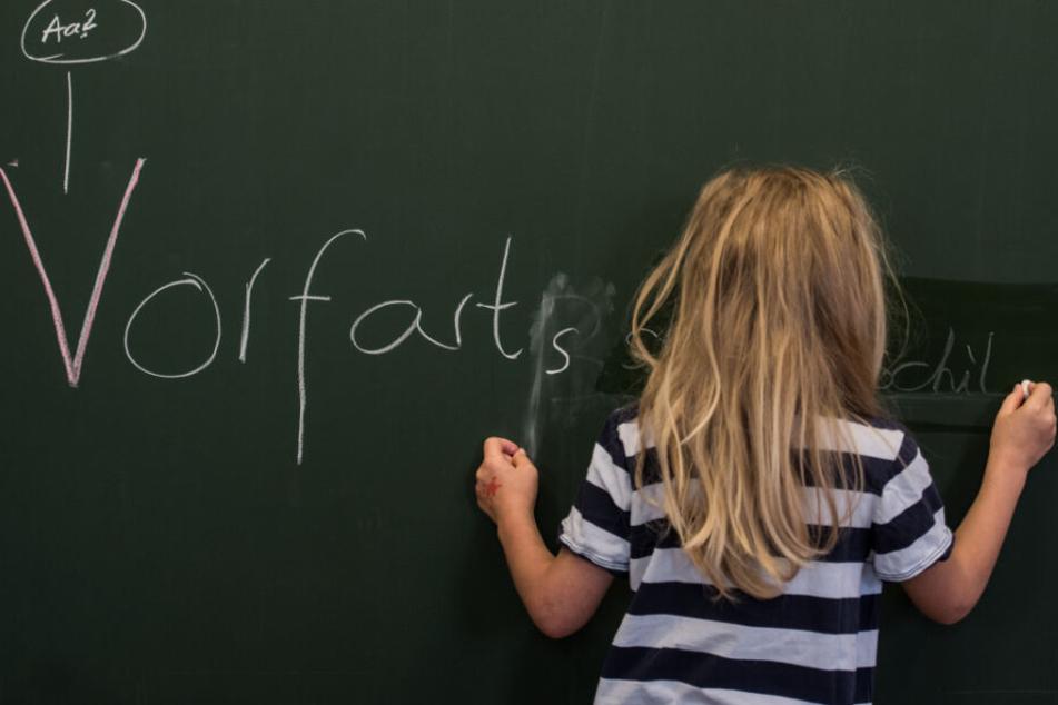 Der Leitfaden war im letzten Schuljahr an 62 Grundschulen getestet worden (Symbolfoto).