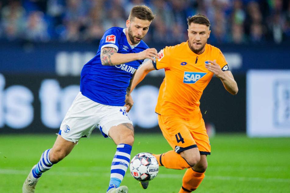 Im Duell: Schalkes Stürmer Guido Burgstaller und Hoffenheim-Verteidiger Ermin Bicakcic.
