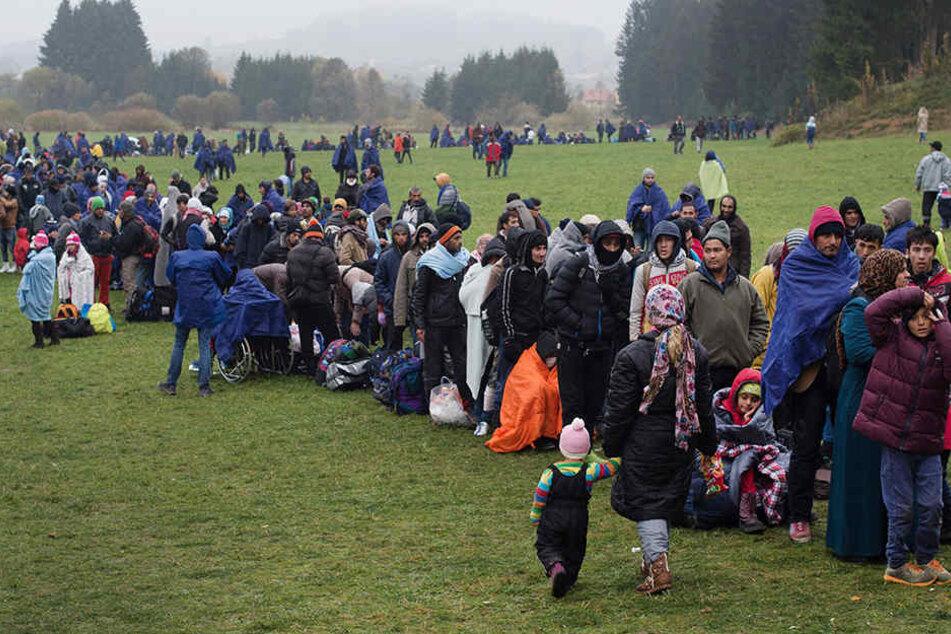 Vom rumänischen Timisoara geht es für die Migranten nach Deutschland.