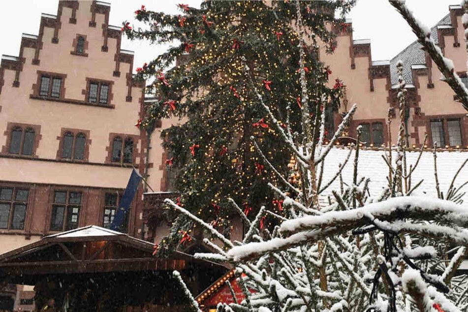 Ein seltener Anblick in der Mainmetropole: Der Frankfurter Römer mit Weihnachtsbaum und Schnee!