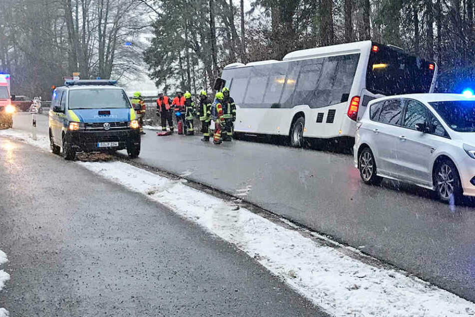 Bus kracht gegen Baumstumpf: 21 Kinder verletzt