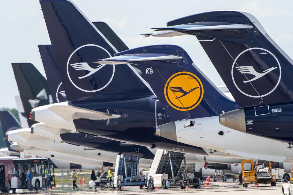 Anleger verärgert: Diverse Lufthansa-Maschine stehen nebeneinander am Terminal.
