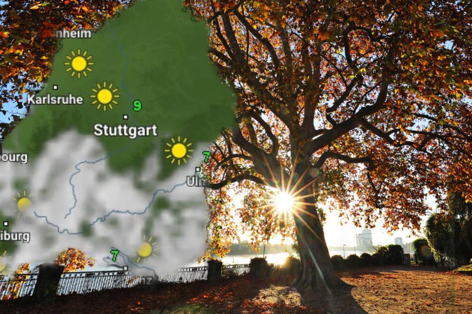 Sonne oder Wolken? So wird das Wetter in Baden-Württemberg