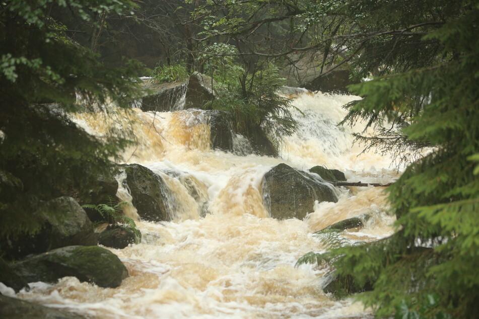 """Regenwasser lässt die Flüsse wie hier an der """"Steinerne Renne"""" anschwellen. Der anhaltende Regen sorgt im Harz für überlaufende Bäche."""