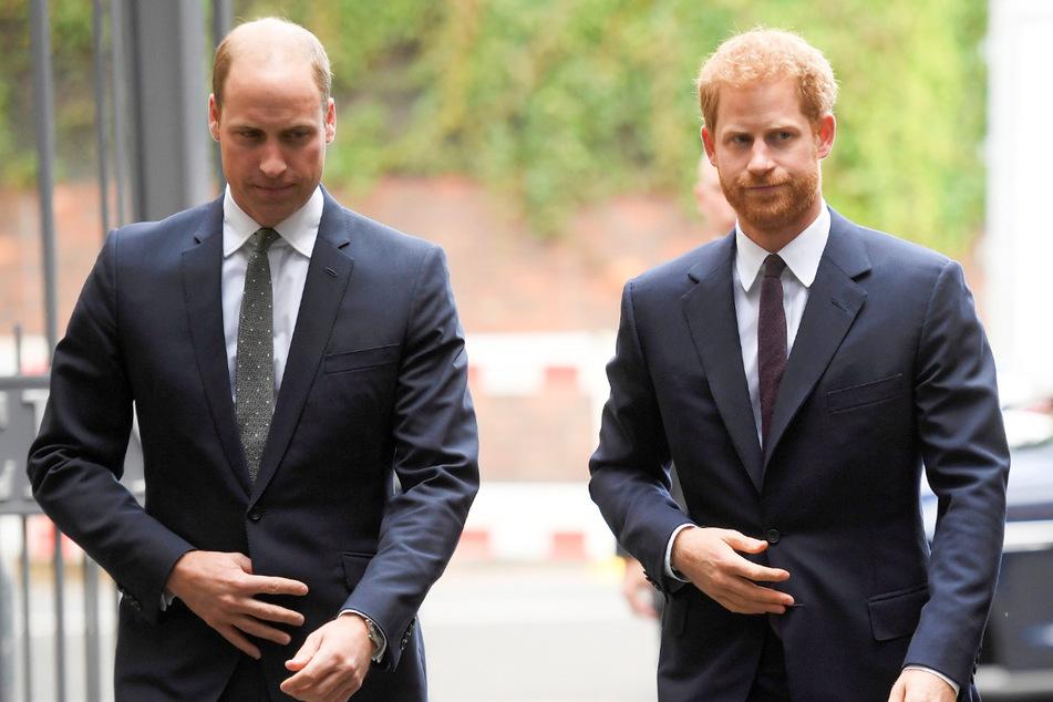 Zoff bei den Prinzen-Brüdern: Was William und Harry nun vereinen soll