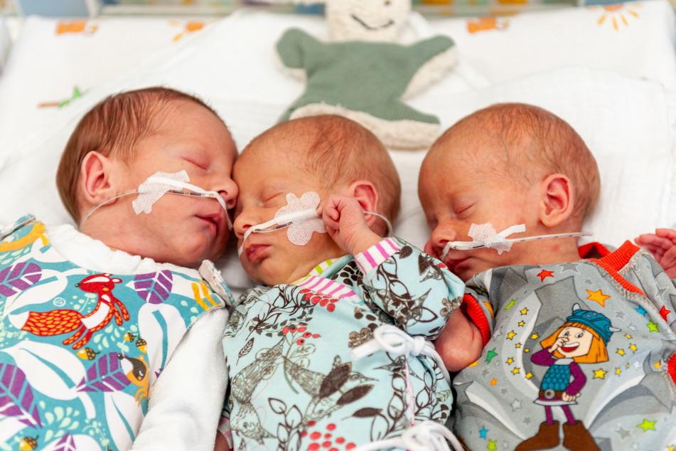 Die Drillinge Richard, Robby und Ronja kamen am 21. Januar in Chemnitz zur Welt.