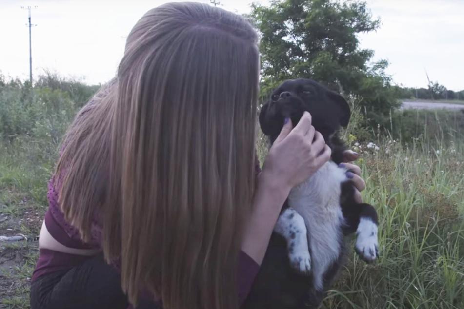 Bei näherer Betrachtung fiel dem Team von den Love Furry Friends auf, dass der Hund eine schlimme Vergangenheit gehabt haben musste.