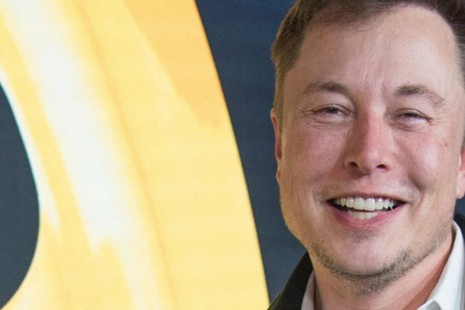 Prototyp vorgestellt! Elon Musk zeigt Gehirn-Chip, der mit dem Handy kommuniziert