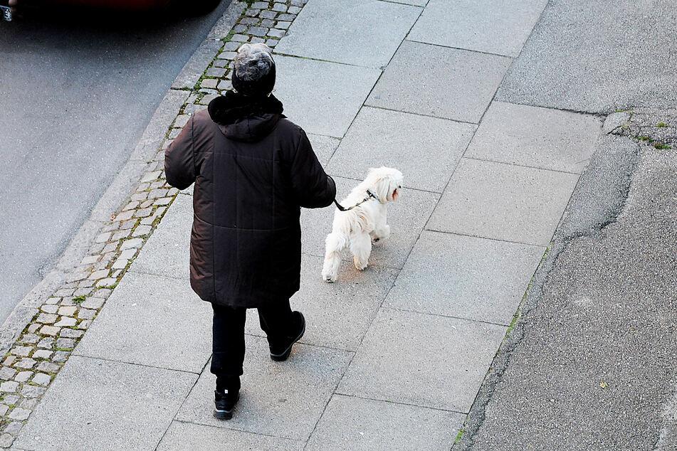 Der Fehler der Frau: Sie ging nicht mit einem Hund raus. (Symbolbild)