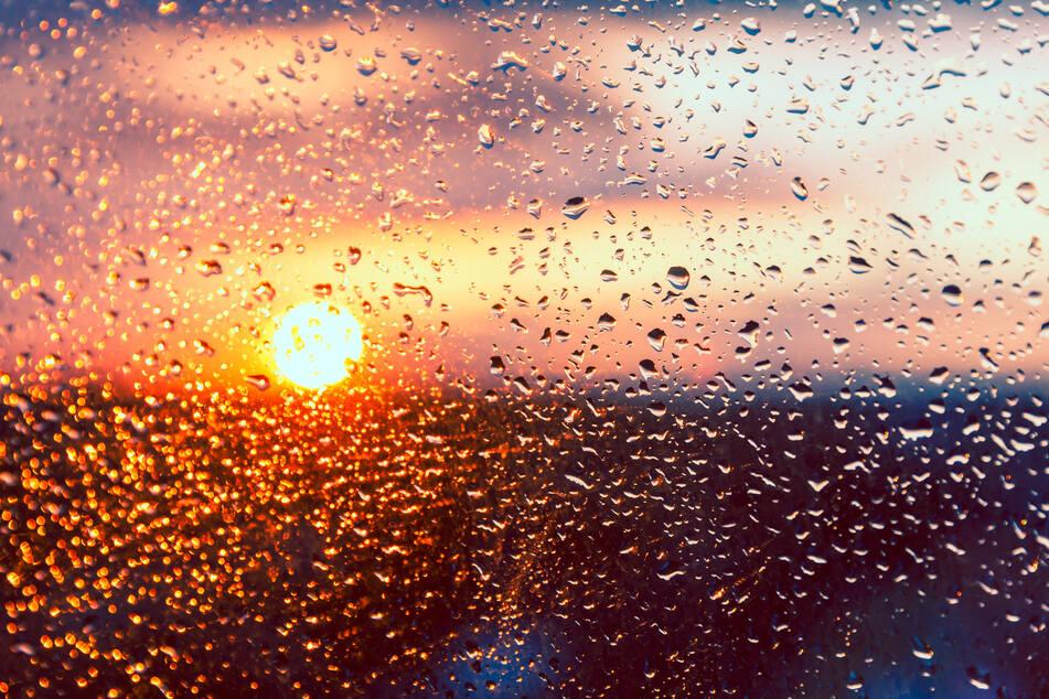 Viel Regen, wenig Sonne - so wird das Wochenende im Freistaat. (Symbolbild)