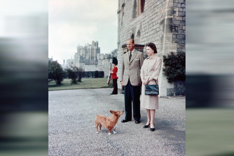 2. Juni 1959: Königin Elizabeth II. und Prinz Philip, Herzog von Edinburgh, stehen mit dem Corgi Sugar vor Windsor Castle.
