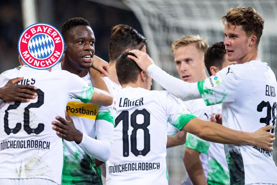 Wildert der FC Bayern im Sommer bei Borussia Mönchengladbach?