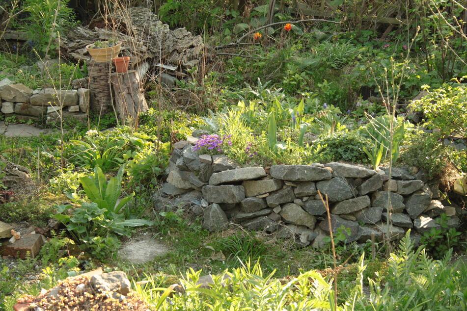 Auch dieser lose Steinhaufen ist ein Biotop. Zahlreiche Insekten finden hier Unterschlupf.