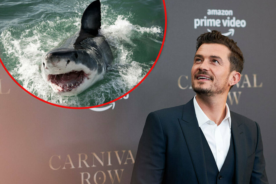 Orlando Bloom posts hair-raising video of close encounter with a great white!